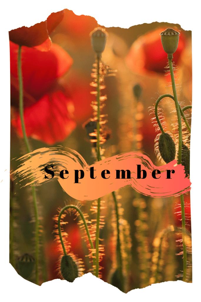 Hey September